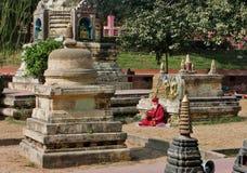 De eenzame hogere monnik bidt aan Boedha in het park Stock Foto's