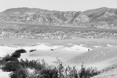 De eenzame Mens loopt de Doodsvallei van Zandduinen Stock Afbeeldingen