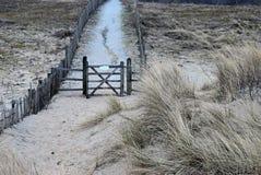 De eenzame omheining en het gras behandelden zandduinen op de Noordzeekust in Nederland Dichtbij Noordwijk am Zee stock foto