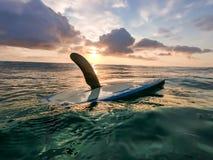 De eenzame surfplank stock afbeelding