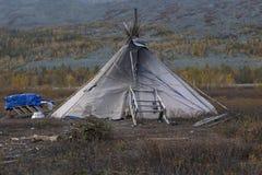 De eenzame tent van rendier met sleeën stock afbeelding