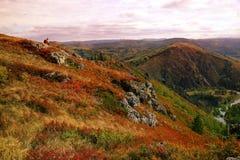 De eenzame toerist in een oranje vest zit boven een heuvel in een natu royalty-vrije stock afbeelding
