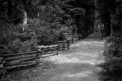 De eenzame weg Royalty-vrije Stock Afbeeldingen