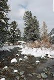 De eerste dag van de winter. Stock Foto