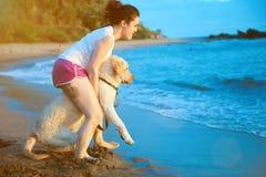 De eerste keer die van Labrador gaan zwemmen Royalty-vrije Stock Foto