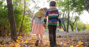De eerste liefde, meisje loopt met kerelholding indient backlight bij gele bladeren in park stock video