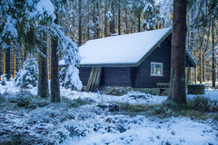De eerste sneeuw in de winter Royalty-vrije Stock Foto