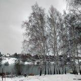 De eerste sneeuw en het water in Venev Stock Fotografie