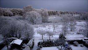 De eerste sneeuw in Falkensee op 12 November, 2015, Brandenburg Duitsland stock videobeelden
