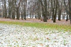 De eerste sneeuw kwam aan het park Royalty-vrije Stock Foto