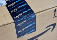 De Eerste verschepende doos van Amazonië Royalty-vrije Stock Foto