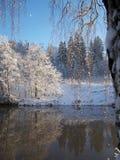 De eerste wintersneeuw Stock Afbeelding