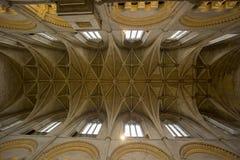 De 14de Eeuw Gewelfd Plafond van de Malmesburyabdij royalty-vrije stock fotografie