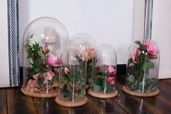 de eeuwige rozen in de fles, Verscheidene rozen Langdurig nam in een fles, in een gestabiliseerde glaskoepel toe, De perfecte gif royalty-vrije stock foto