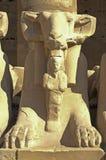 De Egyptische sfinx van de Ram in Karnak Royalty-vrije Stock Afbeelding