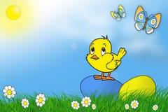 De eieren, ?hicken, vlinder en blauwe hemel Stock Afbeeldingen