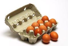 De eieren van de kip in doos Stock Foto's