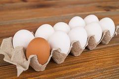 De eieren van de kip in een doos Royalty-vrije Stock Foto's
