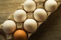 De eieren van de kip in het pakket Stock Afbeelding
