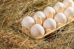 De eieren van de kip in het stro Houten rustieke achtergrond Stock Afbeelding