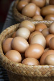 De eieren van de kip in mand Stock Foto