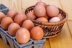 De eieren van de kip van bruine kleur in kartoncellen Stock Foto