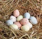 De eieren van de pastelkleur in nest Royalty-vrije Stock Foto