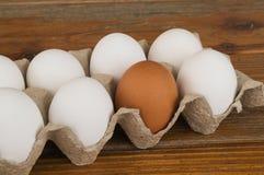 De eieren van de witte en bruine kip in een doos, Royalty-vrije Stock Foto's