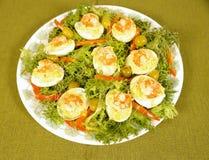 De eieren van garnalen Stock Foto's