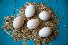 De Eieren van het landbouwbedrijf Royalty-vrije Stock Foto