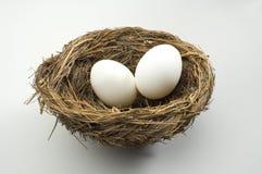 De eieren van het nest Stock Foto's