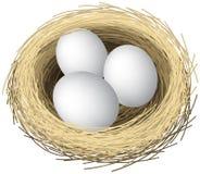 De eieren van het nest Royalty-vrije Stock Foto's