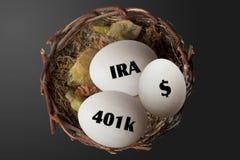 De Eieren van het pensioneringsnest Stock Foto