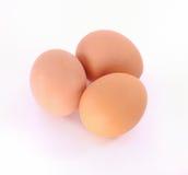 De eieren van kippen Royalty-vrije Stock Fotografie