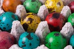 De eieren van kleurenkwartels Royalty-vrije Stock Afbeelding