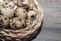 De eieren van kwartels Royalty-vrije Stock Foto