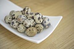 De eieren van kwartels Royalty-vrije Stock Foto's