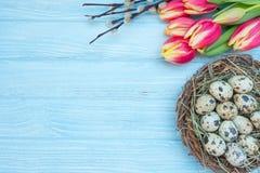 De eieren van kwartels Stock Foto