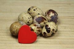 De eieren van kwartels Royalty-vrije Stock Fotografie