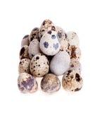 De eieren van kwartels die in een rij op wit worden gelegd Stock Afbeeldingen