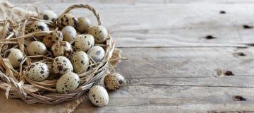 De eieren van kwartels in een mand royalty-vrije stock afbeeldingen