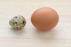De eieren van kwartels en van de kip Stock Afbeelding