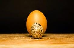 De eieren van kwartels en van de kip Royalty-vrije Stock Foto's