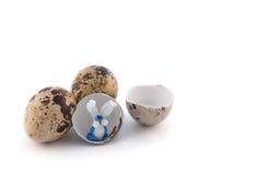 De eieren van kwartels met konijntje Royalty-vrije Stock Afbeeldingen