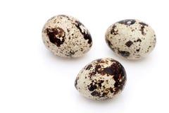 De eieren van kwartels op een witte achtergrond stock foto's