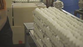 De eieren van laderoverdrachten in een document vakje op een transportbandlijn stock videobeelden