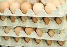 De eieren van Stappled Stock Foto's