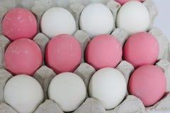 De eieren worden geschikt in rijen stock afbeelding