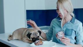 De eigenaar die de hond met een broodje plagen stock videobeelden