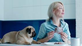 De eigenaar die de hond met een broodje plagen stock video